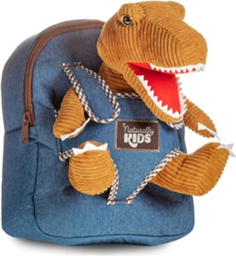 Dinosaur Backpack for Toddlers