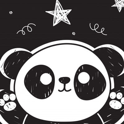 Panda Themed Gifts